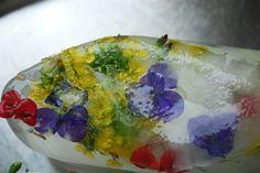 Hielo  + Flores