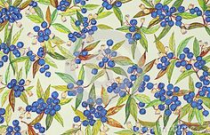 The exquisite blueberry is featured in this detailed watercolor. Berries on branches with leaves and blossoms are painted in an overall random pattern.