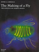 The Making of a Fly: The Genetics of Aminal Design.  This book follow the developmental process from fertilization through the primitive structural development of the body plan of the fly after cleavage into the differentiation of the variety of tissues, organs and body parts that together define the fly. The developmental processes are fully explained throughout the text in the modern language of molecular biology and genetics.