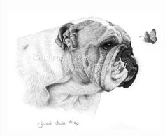 11 x 14 English Bulldog and Butterfly Art Print by jennietruitt, $20.00
