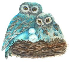 Owl+Note+Cards%2C+Turquoise+Blue+Owls+with+Babies+on+Brown+Nest%2C+New+Baby