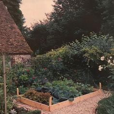 charming vegetable garden #vegetablesgardening