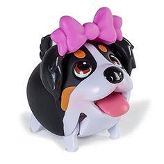 Wonderful Chubbie Chubby Adorable Dog - 575caa5af2fab3b937104cd12e2845fc--chubby-puppies-bernese-mountain-dogs  HD_782559  .jpg