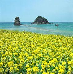 Jeju Island, South Korea.