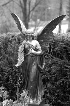 angel with palm frond, a Greco-Roman symbol of victory, evolved to represent triumph over death: ascension and regeneration