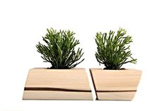 Contemporary solid wood plant holders