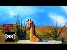 Quicksand | Robot Chicken | Adult Swim - YouTube