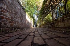 Stoll's Alley, Charleston, SC  Used this alley during school to get to the playground!  single file!