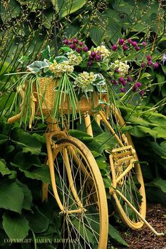 Garden gazing yellow bike