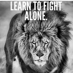 Learn to Fight. Alone! .  #travel #traveller #travels #travelgram #wanderlust #instatravel #traveling #travelling #travelphotography #nature #traveler #igtravel #mytravelgram #explore #travelingram #photography #instagood #yolo #adventure #model #nofilter #fashion #instagram #quotes #sports #cairo #dubai #london #newyork #losangeles