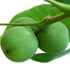 Green Flowers, Health Motivation, Cancer, Fruit, Vegetables, Healthy, Food, Bing Images, Medicine