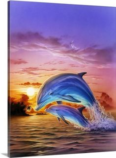 Robin Koni Premium Thick-Wrap Canvas Wall Art Print entitled Sunset Dolphins, None Orcas, Beautiful Creatures, Animals Beautiful, Dolphin Painting, Dolphin Tale, Dolphins Tattoo, Ocean Wallpaper, Water Animals, Wale