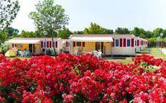 Europe Holidays, Italy Holidays, Holiday Apartments, Lake Garda, Mobile Home, Cool Places To Visit, Swimming Pools, Holiday Rentals, Villa
