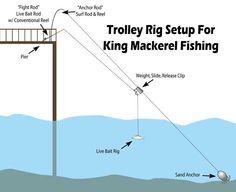 "Fishing Fit to a ""T"" - North Carolina Sportsman"