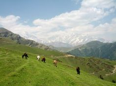 Roopkund: From Boredom to Freedom