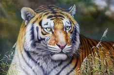 油絵油彩 「動物画」猛虎 朝鮮芸術画家肉筆画_画像1 Animal Paintings, Auction, Animals, Animales, Animaux, Pet Pictures, Animal, Animais, Animal Drawings