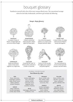 Did you know that there are several types of bridal bouquets? Take a look at this helpful glossary from the Knot on the many different bouquet shapes! It also has a floral color guide, which reveals the best blooms by their color!
