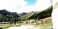 Passeggiate alla scoperta del Trentino in malghe e rifugi - APT Valle di Non