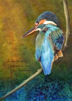 """""""As Kingfishers Catch Fire"""" Finished (for now) Photo Ref by kind permission of Flickr / Crested Firegold"""