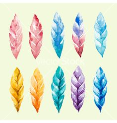 Set of colored watercolor feathers vector - by meggichka on VectorStock®