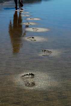 footprints in the water.....