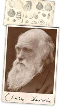 """Charles Darwin -Darwin published his theory of evolution with compelling evidence in his 1859 book On the Origin of Species, overcoming scientific rejection of earlier concepts of transmutation of species.  """"It is not the strongest of the species that survive, nor the most intelligent, but  the one most responsive to change.""""    Sir Francis Darwin (1848 - 1925)"""
