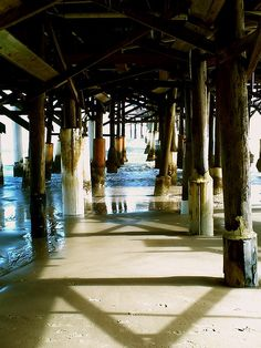 Cocoa Beach, FL © Michelle Cruz Rosado Photography