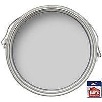 Dulux Weathershield Exterior Smooth Masonry Paint - Pale Slate - 250ml