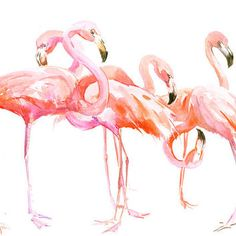 Two Flamingos, Original watercolor painting, 15 x 11 in, flamingo lover art…