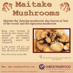shiitake mushroom health benefits pdf