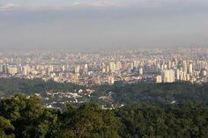 Parque Estadual da Cantareira |Localizado na zona norte de São Paulo e em mais outros três municípios (Guarulhos, Mairiporã e Caieiras), o parque apresenta uma variedade de espécies tanto na fauna como na flora. Uma peculiaridade é a existência da única espécie de pinheiro nativa do Brasil