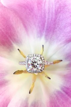 Classic white gold round diamond halo