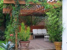 Vigorous container plants and retro furniture give this outdoor space a relaxed and timeless quality.