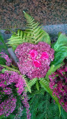 Sydän: maksaruoho, ruusu ja kotkansiipi