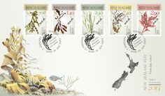 NZ Native Seaweed First Day cover First Day Covers, Seaweed, Postage Stamps, Nativity, Coins, Graphic Design, Illustration, Coining, Rooms
