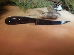 Kodiak Fish Fillet knife with Black Walnut by EricsCustomKnives