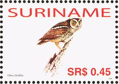 Tropical Screech Owl stamps - mainly images - gallery format