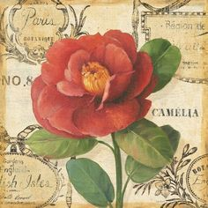 papers.quenalbertini: For decoupage by Lisa Audit   Mi baul del decoupage