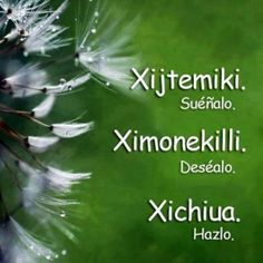 frases-en-nahuatl-2 Words Quotes, Me Quotes, Motivational Quotes, Inspirational Quotes, Beautiful Mind, Beautiful Words, Aztec Religion, Magic Words, Idioms