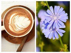 Cafeluța de CICOARE protejează FICATUL, crește IMUNITATEA, scade COLESTEROLUL, combate DIABETUL (rețetă + beneficii) | La Taifas