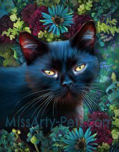Black Cat Series. This is Indigo!