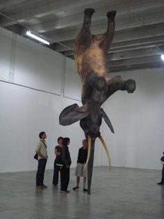 Daniel Firman 3 Levitating Elephant Installation Balancing On Its Trunk #elephant #paris
