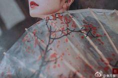 Chinese Style, Chinese Art, Chinese Fashion, Traditional Chinese, Asian Fashion, Traditional Outfits, Asian Fever, Asian Photography, Kimono Japan