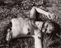 The Black Dahlia Crime Scene