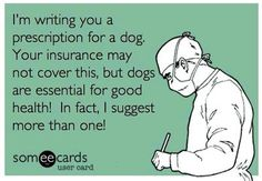 Emotional Support Animal Letter of Prescription Service