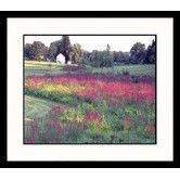 Found it at Wayfair - Landscapes Wildflower Countryside Framed Photographic Print