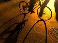 334/365 Sombras de mañana Se nos acaba en noviembre, este lunes a primera hora he estado esperando a ver si pasaba alguna bicicleta para capturar este contraluz y así empezar bien la semana. Y ha empezado bien porque el ciclista que he fotografiado es un buen amigo mío, gracias por pasar despacito