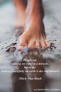 People say walking on water is a Miracle, but to me, walking Peacefully on Earth is the real Miracle ⊰♡⊱ Thich Nhat Hanh