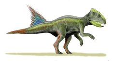 Archaeoceratops Picture - Picture of Archaeoceratops
