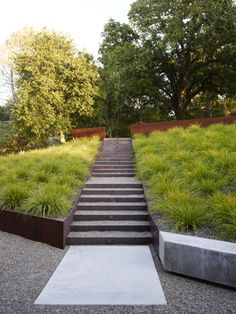 Andrea Cochran Geyserville Residence, California  This design reconnects the residence with the surrounding landscape: plantings of drought tolerant native grasses and succulents, CorTen steel  Photography: Marion Brenner